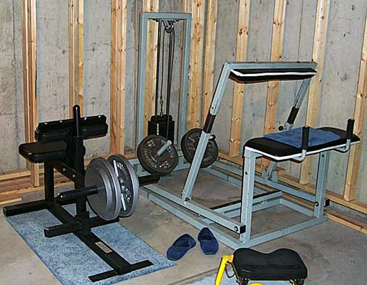 donkey calf machine and seated calf raise