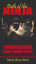 Path of the Ninja: Shinobigatana